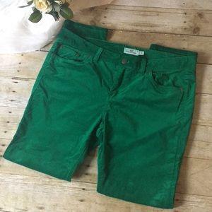 Vineyard Vines Emerald Velvet Pants Size 12